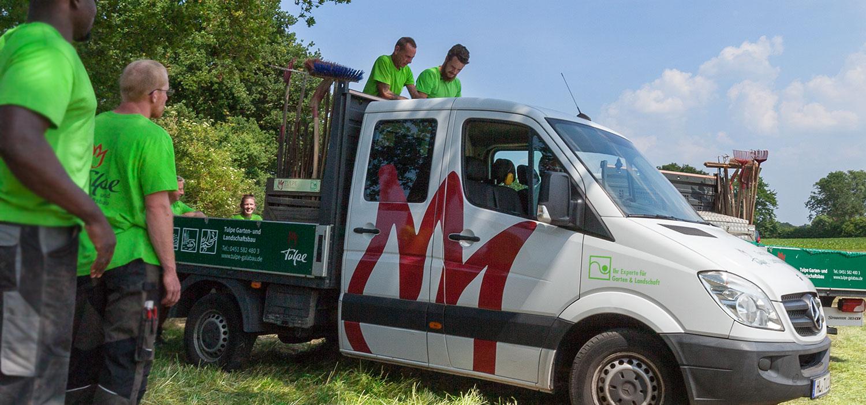 Jobs Stellenangebote Tulpe Garten Und Landschaftsbau Lübeck