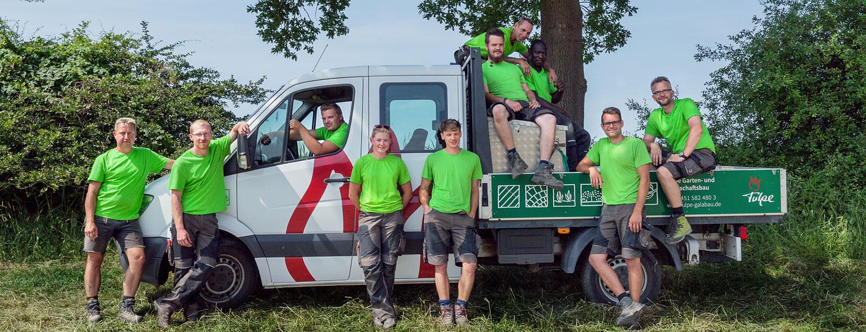 Tulpe Team Garten- und Landschaftsbau Lübeck Teamarbeit Teamwork Über uns