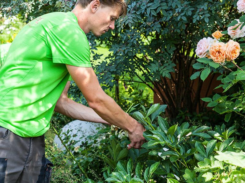 Lasse macht Karriere im Handwerk. Heute ist er Geschäftsführer in seinem ehemaligen Ausbildungsbetrieb Tulpe Garten- und Landschaftsbau in Lübeck